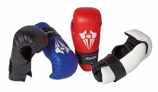 KWON Anatomic  ITF/Kick-Boxing Gloves